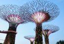 ทัวร์สิงคโปร์ เลสโก สิงโตพ่นน้ำ ยูนิเวอร์แซล สตูดิโอ เกาะเซ็นโตซ่า 3วัน 2คืน (ก.ค.-ธ.ค.62) โดยสายการบิน Singapore airlines เริ่มต้น 11,999.-